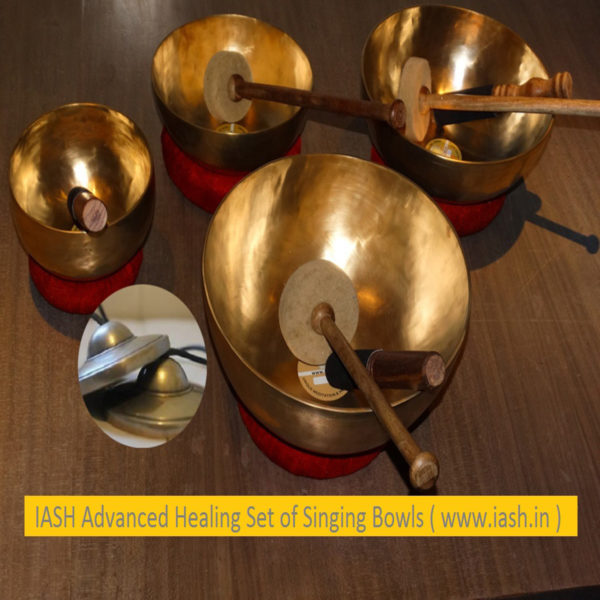 IASH advanced set of singing bowls India 1