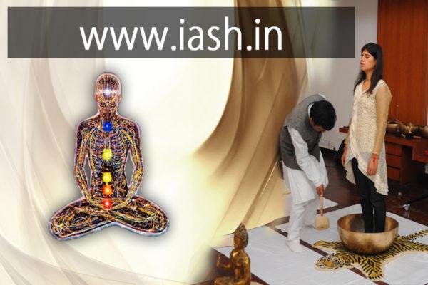 IASH energy meridian singing bowls