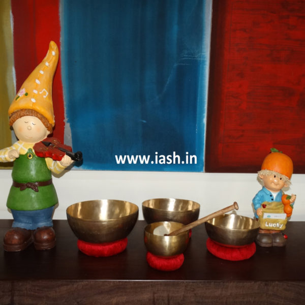 iash advanced set of singing bowls 1